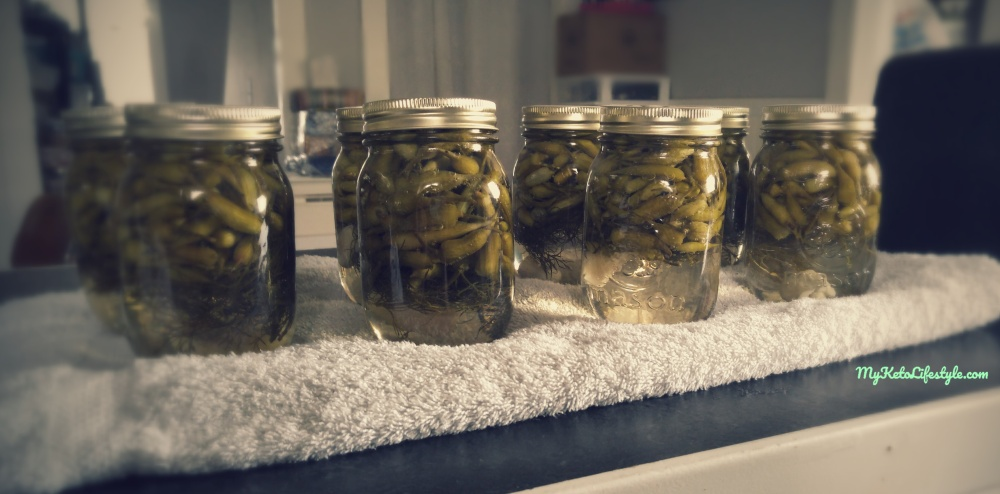 pickle jars.jpg